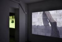 Le Livingroom Montpellier 2012