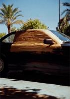 3_skotch-car.jpg